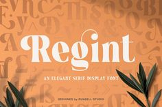 Regint perfectly represents modern and contemporary era but it's strong modern appearance. We decided to make new unique alternates character that had that classy feel. It's a very versatile font that works great in large and small sizes. And an upper and lowercase serif font with nicely balanced curves. Carefully made with perfectly horizontal vertical bezier handles. Every single letter contains beautiful alternates characters (ss01 – ss04) and feature ligatures. Ios, Android, Bold Fonts, Game Background, Typography, Lettering, Game Assets, Social Media Template, Animation