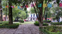Santa Catarina, Coyoacán