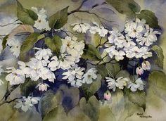White Cherry Blossom by Rachel McNaughton - Watercolour Painting - Mini Gallery Watercolour Painting, Watercolor Flowers, Watercolors, Drawing Flowers, White Cherry Blossom, Spring Blooms, Art Boards, Drawings, Artwork