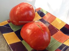 Large Red Beefsteak Seeds now available @ www.renaissancefarms.org
