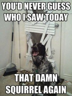Will Never Guess // funny pictures - funny photos - funny images - funny pics - funny quotes - #lol #humor #funnypictures