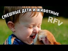 Дети и животные 3 · Приколы с животными 2015 · Cats, Dogs & Cute Babies ...