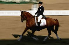 Robert Jeffrey Dover (born June 7, 1956) is an American equestrian who has had international success in the sport of dressage. He competed in his first Olympics in 1984. He competed in every summer Games between 1984 and 2004, winning four team bronze medals. He also took a team bronze at the 1994 World Equestrian Games. Dover is the most honored dressage rider in the United States, and has been inducted to the United States Dressage Federation Hall of Fame.
