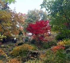 High Park, The Japanese Garden in Autumn,Toronto, On Photo :