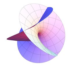"""Rotating Enneper Surface"" – Greg Egan"