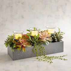 Faux Succulent Multiple Tealight Candle Holder is part of Succulents - Reserve a special display space and revel in the realism of our handcrafted succulent garden in a simple metal container Add LED tealights and you've created instant ambience Artificial Floral Arrangements, Wedding Arrangements, Flower Arrangements, Succulent Centerpieces, Candle Centerpieces, Simple Centerpieces, Wedding Centerpieces, Wedding Decorations, Led Tea Lights