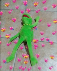 New memes de amor rana rene ideas New Memes, Funny Memes, Les Muppets, Sapo Meme, Heart Meme, Heart Emoji, Cute Love Memes, In Love Meme, Cartoon Profile Pictures