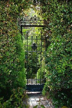 If you long for a mind at rest ... and a heart that cannot harden ... go find a gate that opens wide ... into a secret garden! image via indeeddecor.com