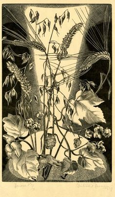 Ears of wheat, corn, hops and foliage. 1929 - Gertrude Hermes - Wood-engraving on handmade Japanese paper