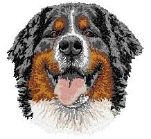 embroidery designs bernese mountain dogs | Cosy Dog Store Information Pages