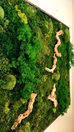 Large Wall Sculpture Moss Wall Art Plant Painting