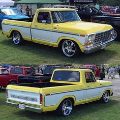 78 Ford F100..