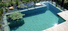 Swissteichtypen: Schwimmteiche | Swissteich