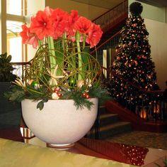 Stapleton Floral Design