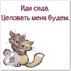Mīlu tevi ļoti ļoti un zinu ka mīli mani 😛 Russian Humor, Russian Quotes, Funny Expressions, Daily Wisdom, Romantic Love Quotes, Just Smile, Man Humor, In My Feelings, Fun Facts