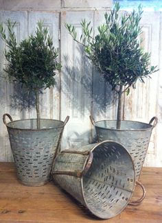 \olive colanders and buckets- there are so many ways you could use these.