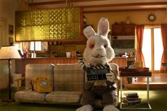 Lemon GreenTea: Save Ralph, calls for an end to cosmetic testing o... Cosmetic Animal Testing, Stop Animal Testing, Stop Animal Cruelty, Tricia Helfer, Ricky Gervais, Animation Stop Motion, Animation Film, Pom Klementieff, Rabbit Names