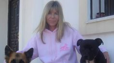 Louise Stapleton-Frappell is a Steering Committee Member of The Professional Guild British Isles; Steering Committee Member of Doggone Safe and Regional Dog Training, Adidas Jacket, Conversation, Rain Jacket, Windbreaker, Jackets, Dogs, Down Jackets, Dog Training School