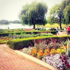 The stunning is the perfect setting for Glen Coe, Chicago Botanic Garden, Art Festival, Botanical Gardens, Garden Art, Vineyard, Flowers, Outdoor, Outdoors
