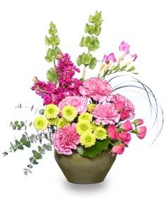 *. Flowershopnetwork