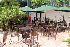 ■Urth Caffe■ 東京都渋谷区神宮前4-9-8 SO-CAL LINK OMOTESANDO 営業時間 10:00~20:00(L.O. 19:30) 定休日 なし TEL: 03-6447-4771 HP: http://www.urthcaffe-japan.com/