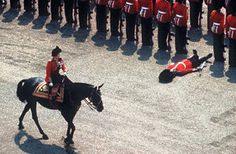 Horse Guards Parade, Queen Elizabeth II riding her horse Burmese during the Trooping of the Colour ceremony. A Grenadier Guard lies prostrate at attention as all good Guardsmen should when they faint! Trooping Of The Colour, Palais De Buckingham, Star Trek, Horse Guards Parade, Rare Historical Photos, Rare Photos, Royal Guard, Picture Fails, Isabel Ii