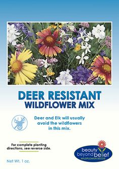 Deer Resistant Wildflower Mix; must get next year!
