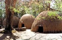 Zulu huts.....original zulu housing. Thatch/Grass-made housing, helps with the heat