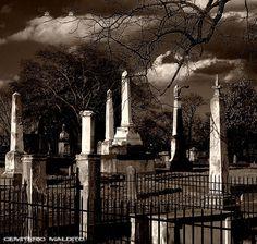 Cemitério-6
