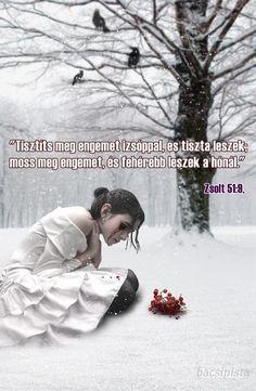 """""""Tisztíts meg engem izsóppal, és tiszta leszek; moss meg engemet, és fehérebb leszek a hónál."""" Zsolt 51:9,"""