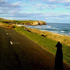Dunedin St Kilda