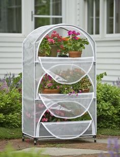 Great seed-starting greenhouse. Great to use even inside in a sunny window, and save from grazing house cats and house rabbits... always MY challenge.