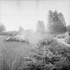 Deux half-track Sdkfz 250/9 allemands détruits par des chars britanniques durant l'avancée sur Vire, le 2 août 1944.