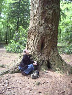Yoni Tree