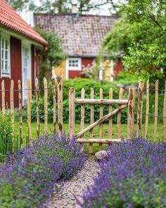 Vad jag drömmer om till min trädgård just nu… Rustic Gardens, Outdoor Gardens, Fenced Vegetable Garden, Farmhouse Garden, Cottage Exterior, My Secret Garden, Garden Paths, Garden Inspiration, Beautiful Gardens
