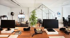 "our ""meeting room"" for now: an indoor glasshouse"