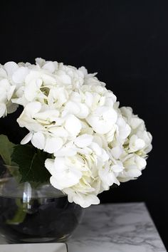 imagine a row of white hydies next to the black timber on south wall - gorgeous My Flower, Fresh Flowers, White Flowers, Beautiful Flowers, White Hydrangeas, Deco Floral, Arte Floral, Hortensia Hydrangea, White Chic