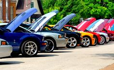 Great shot of the endless lineups of Mustangs at Shelby Fest.
