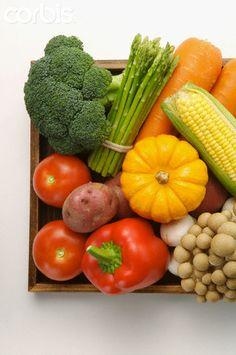 Many kinds of fresh vegetables