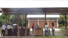 Modulo de post cosecha de cacao en CAIP Tocache con el aporte del Gobierno Regional de San Martin y USAID.