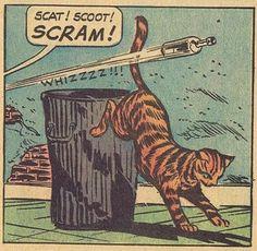 Gutter cat - comic plate by ?