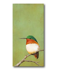Perch III Wrapped Canvas from Courtside Market on Zulily. Maybe something like this for Jason's bedroom?