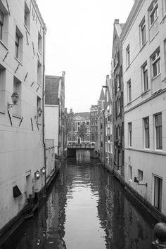 Amsterdam daily roads
