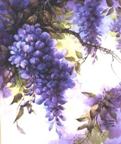 Wisteria painting by Barbara Duncan China Painting, Tole Painting, Painting & Drawing, Art Floral, Flower Images, Flower Art, Watercolor Flowers, Watercolor Paintings, Watercolour