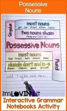 Possessive Nouns Interactive Notebook Activity, Foldable, Organizer, Lesson