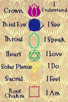 The Seven Chakras. They generally align with nerve bundles from the base of the spine to the crown of the head. They open and close and attaining alignment is always a fun challenge.