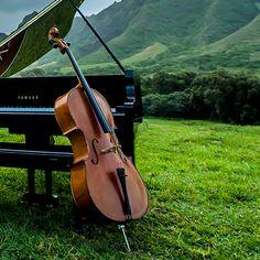 The Piano Guys: Steve's Cello Sampson