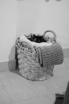 Bonecas de Papel #somosbonecasdepapel Cat in the basket