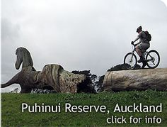 Cycling in Auckland - Puhinui Reserve Cycle Trails, Auckland Bike Rides, Family Outing, Auckland, Cycling, Lion Sculpture, Old Things, Biking, Bicycling, Ride A Bike
