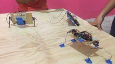 Hoy en la clase de Arduino hicimos bichos! #arduino #servomotors #bug #diy #fablabmaya #fablab #hublab #talleres #shittymachines #degree #leg #nolaser #homemade #sg90 #robotbattle #sensor by fablab_maya